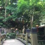 等々力渓谷 利剣の橋