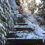 高尾登山 登山道階段