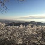 高尾登山 展望台風景