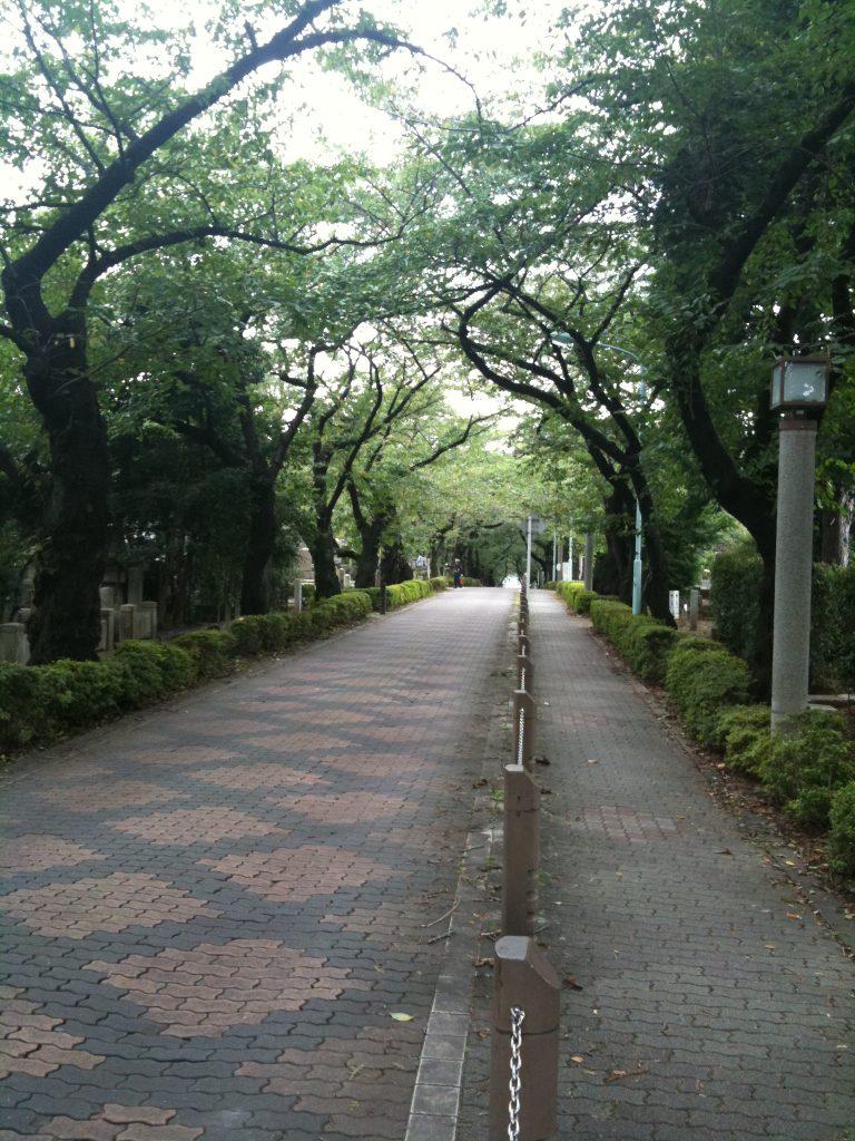 05-2 東京都立青山霊園