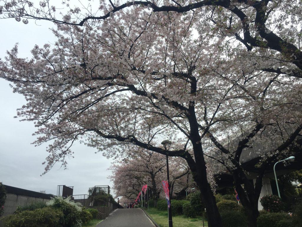 10-3 隅田公園