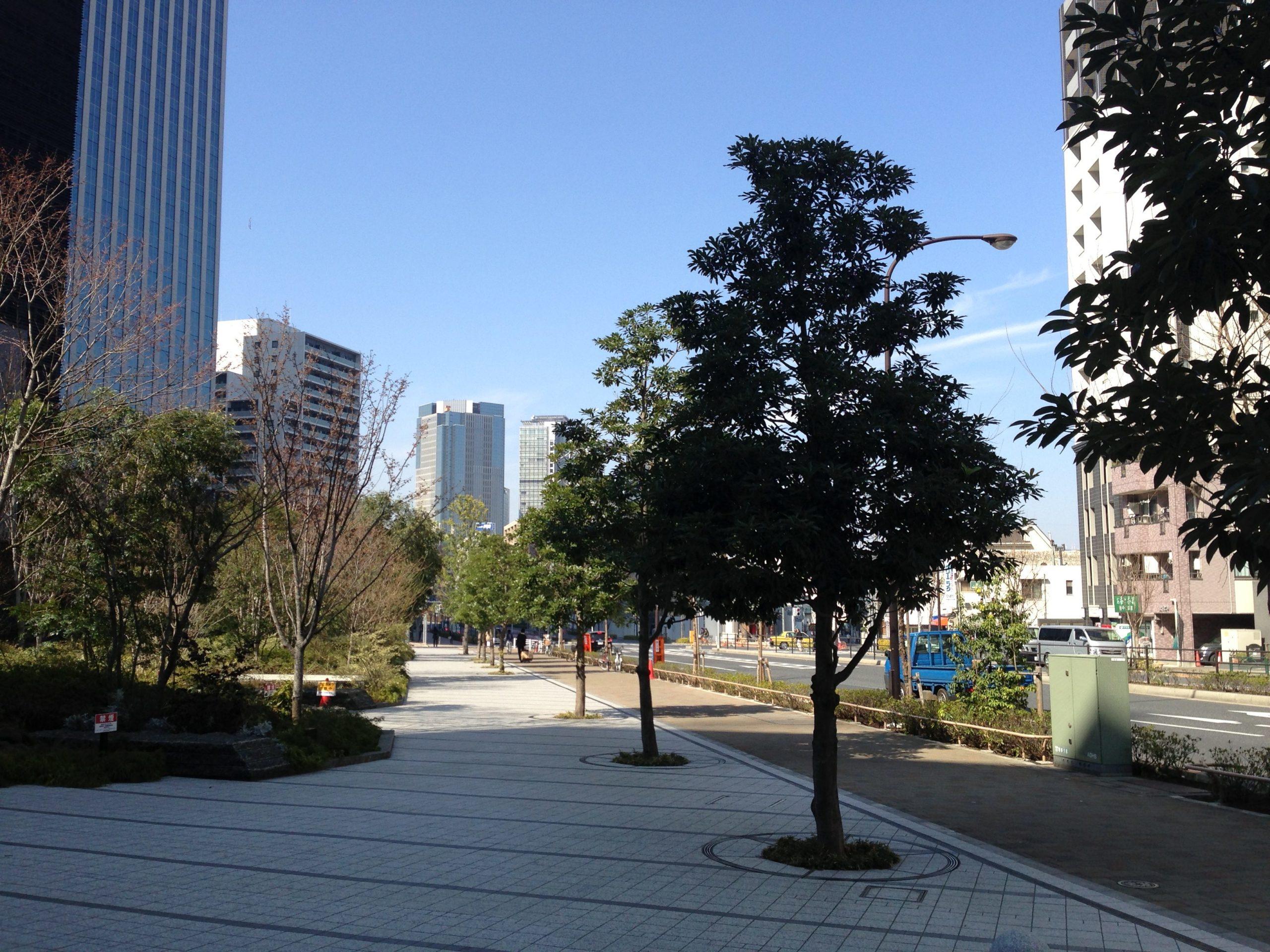 15-1 新宿今昔散歩 写真