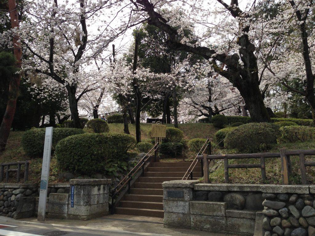 12-3 多摩川台公園