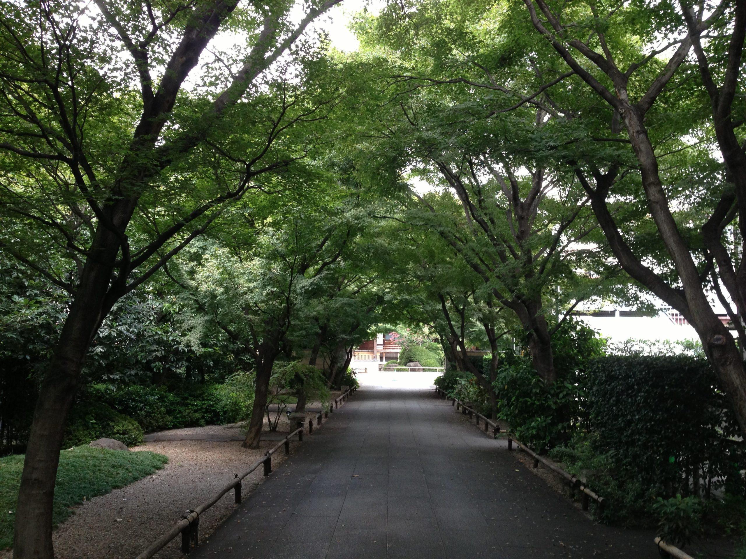 14-2 社寺遺跡めぐり散歩 写真