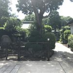 荏原七福神 摩耶寺 山門