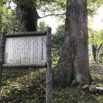 諏訪大社上社前宮 神殿跡