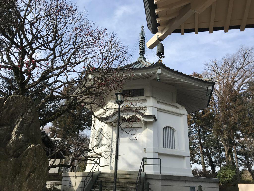 豪徳寺 納骨堂