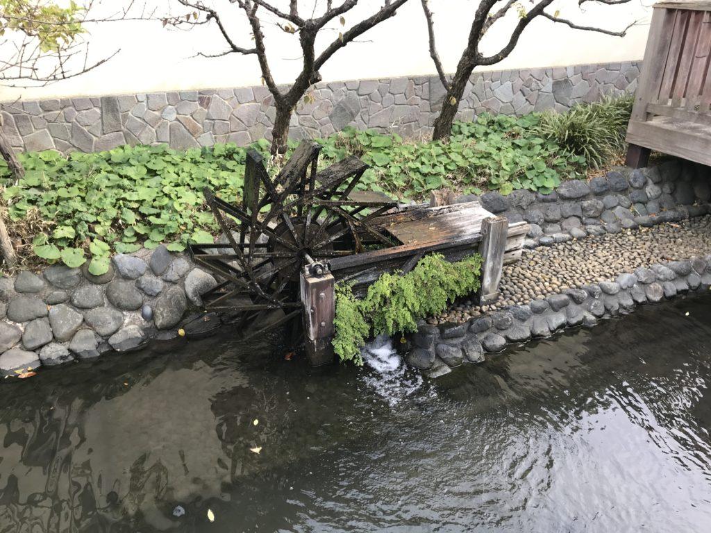TM01_六郷用水遊水路05