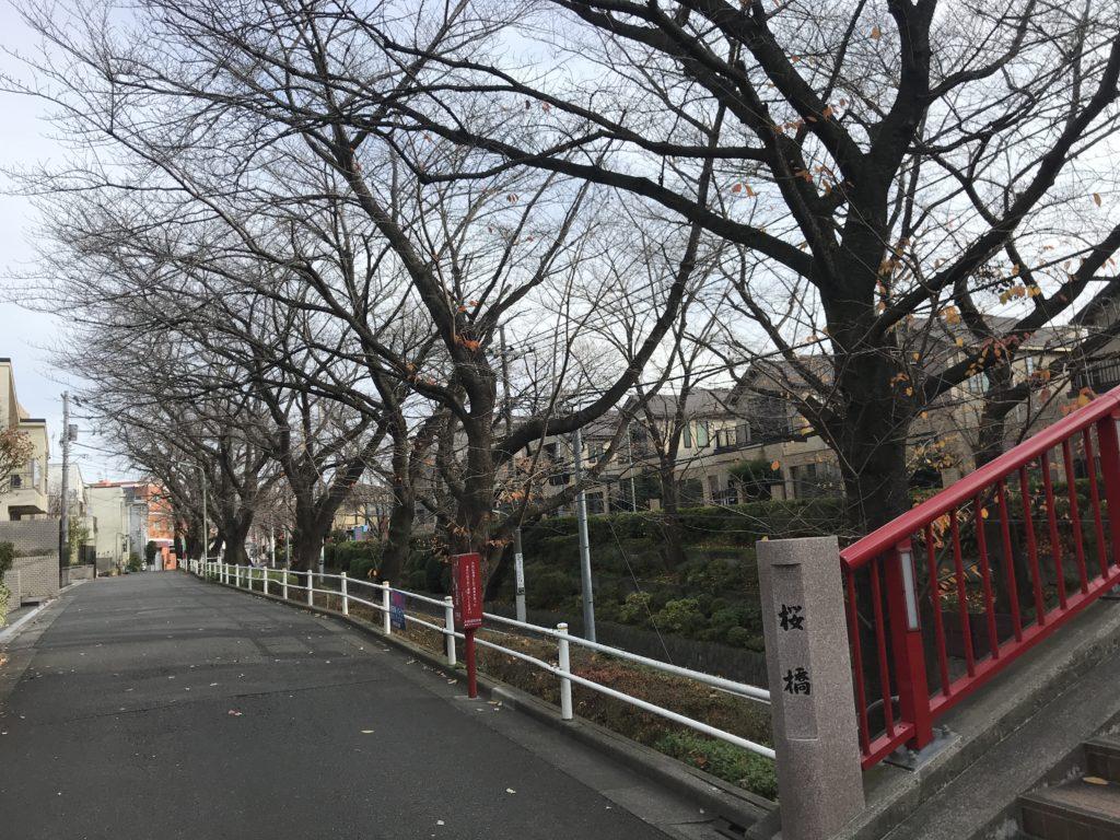 TM02_桜坂03