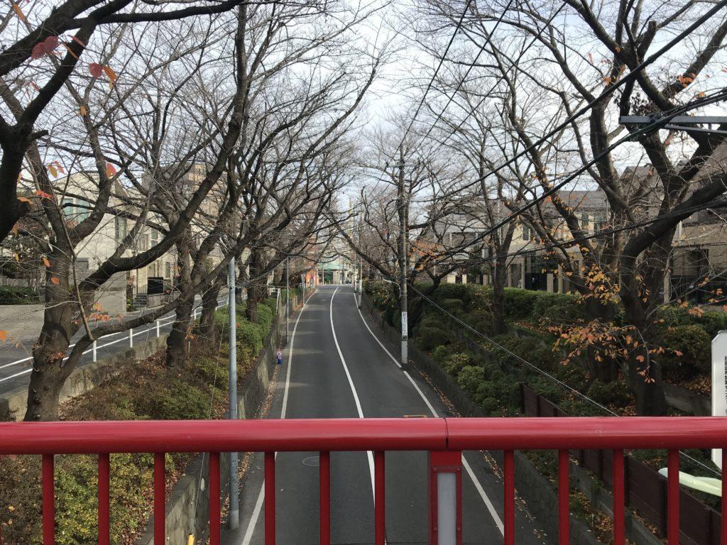 TM02_桜坂04