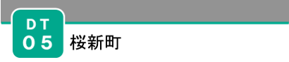 DT05_logo