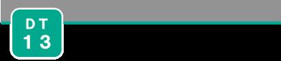 DT13_logo
