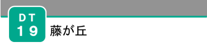 DT19_logo